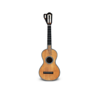 26 Heptachord Guitar