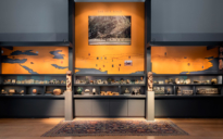 Silk Road Exhibition gallery image