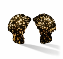 6 • An Outstanding Pair of Pallasite Meteorite Slices
